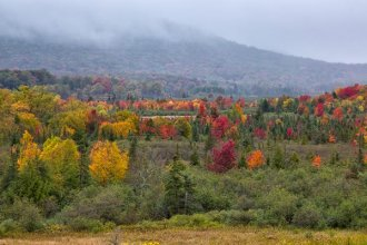 Canaan Valley Fall Colors