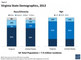 Figure 2: Virginia State Demographics, 2012