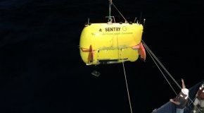 publish of autonomous underwater automobile Sentry from analysis vessel Atlantis.